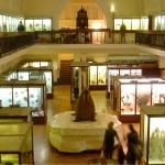 Museum-laura-mcnamara-ceramics